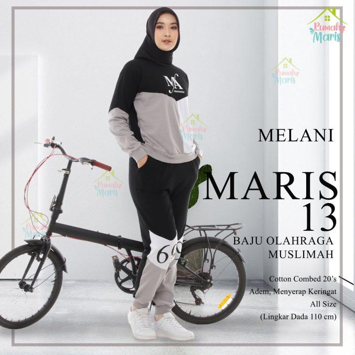 MELANI-min